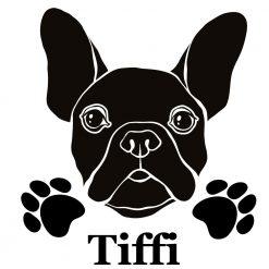 Aufkleber französische Bulldogge mit Wunschname